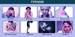 symptoms of typhoid